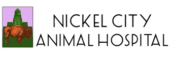 Nickel City Animal Hospital